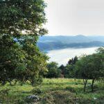 Brvnara na brdu - Kokin Brod